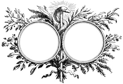 Two Circular Frames Divided by a Snake - Design Image Source