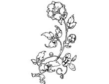 Floral Clip Art - Design Image Source