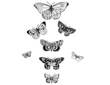 Butterfly Clip Art Pictures - Design Image Source