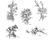 Flower Clipart Images - Design Image Source