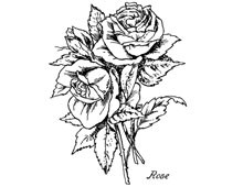 Rose Clip Art Image - Design Image Source