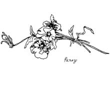 Pansy Flower Clip Art - Design Image Source