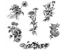 Flower Graphic Images - Design Image Source