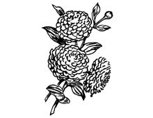 Flower Illustration Clipart - Design Image Source