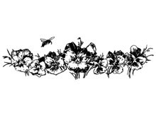 Pansies Clip Art - Design Image Source