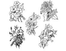 Flower Graphics Clip Art