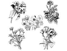 Floral Clip Art Images
