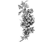 Wild Rose Clipart