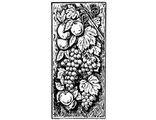 Clipart of Grapes and Leaves