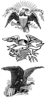 Patriotic Eagle Clipart - Design Image Source