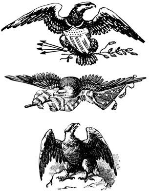 Patriotic Eagle Pictures - Design Image Source