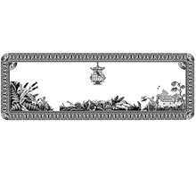 Floral Frame Design