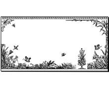 Free Floral Frame Design